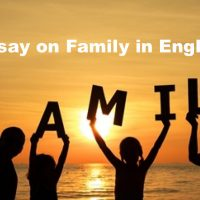 Essay on Family in English