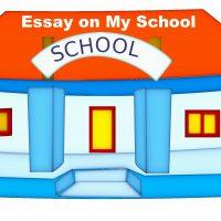 Essay on My School in English (1)