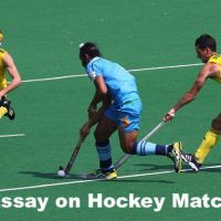 Essay on Hockey Match
