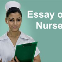 Essay on nurse in English