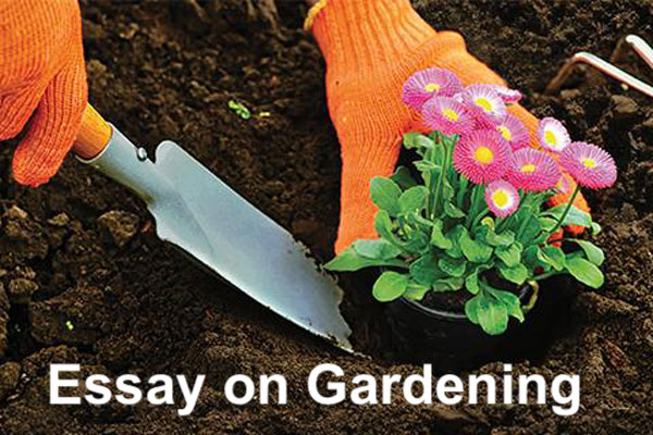 Essay on Gardening