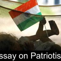 essay on patriotism in english