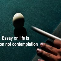 Essay on life is action not contemplation