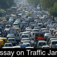 Essay on Traffic Jam