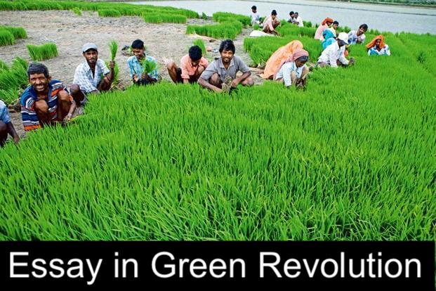 essay Green Revolution